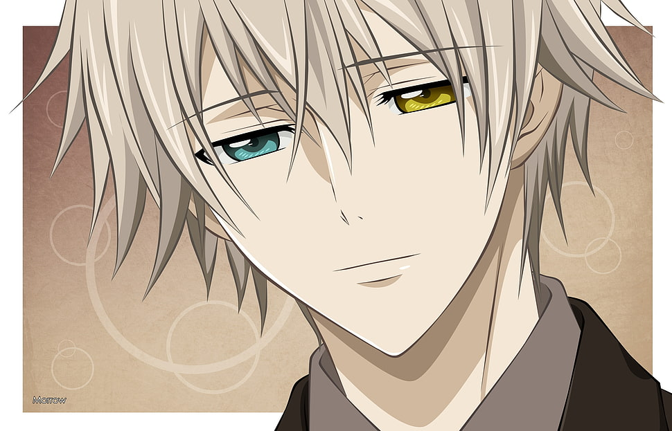 anime boy haired Grey