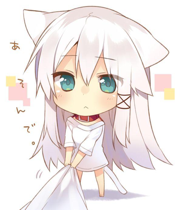white with hair Anime girl neko