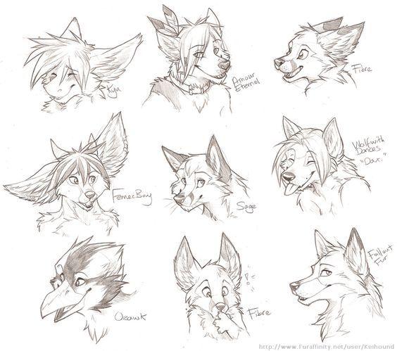 face Anime wolf